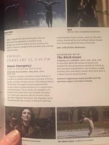DE in NYC Programme